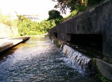 ありがとう39ツアー【沖縄で湧水を巡る旅 中編】